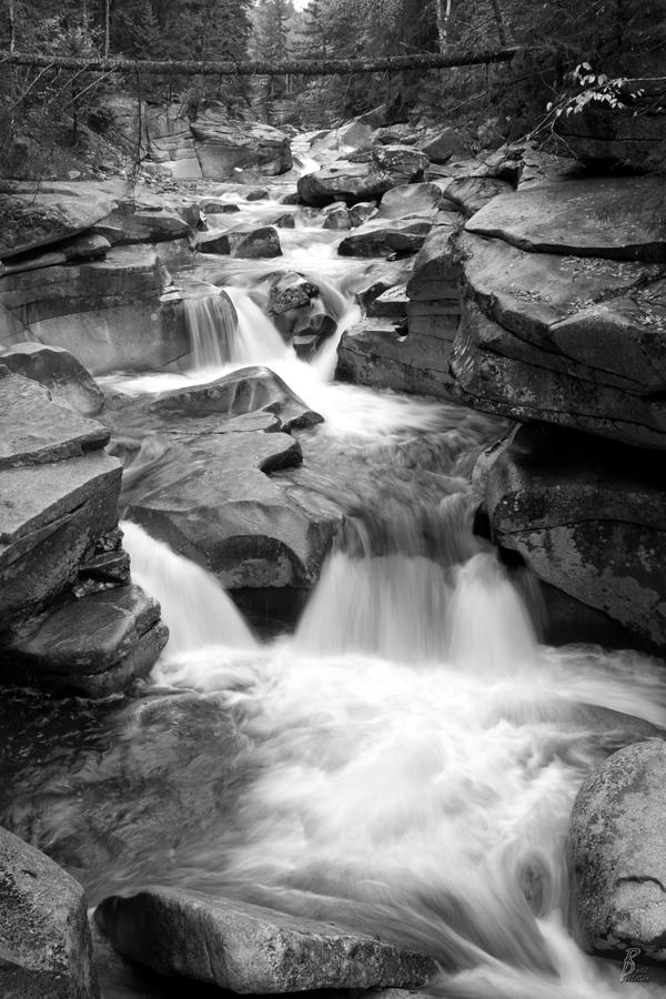 Water Photograph - Upper Ammonoosuc Falls Black And White by Brett Pelletier