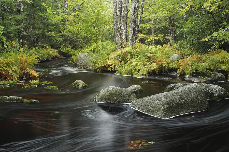 Upper Bear River In Early Autumn Nova Photograph by Scott Leslie