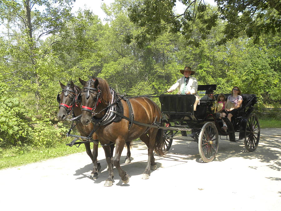 Canadian Horse Photograph - Upper Canada Village by Peggy  McDonald