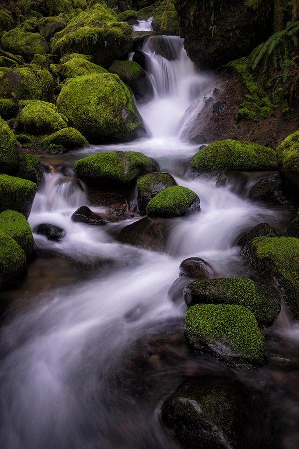 Columbia River Gorge Photograph - Upper Ruckel Creek by Brian Bonham