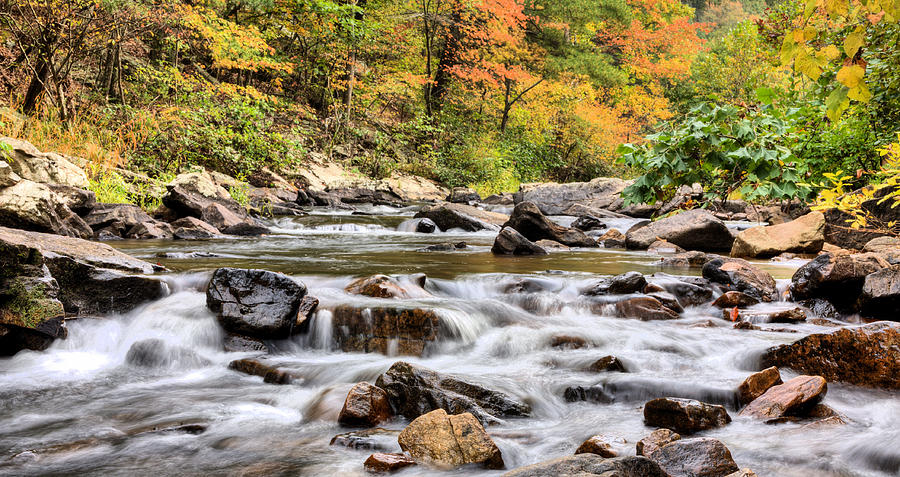 Upstream Photograph by JC Findley