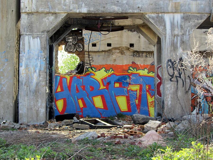 Urban Decay Solvay Ruins 10 Photograph