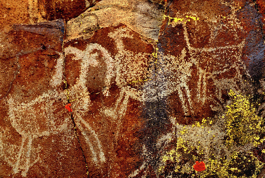 Ancient Photograph - Usa, California, Little Petroglyph by Jaynes Gallery