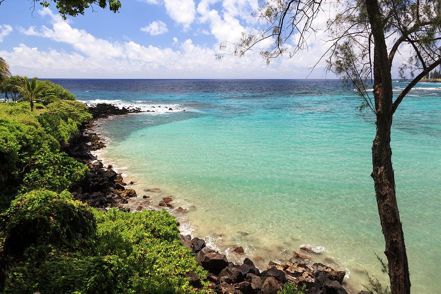 Usa, Hawaii, Maui, Road To Hana Photograph by Michele Falzone