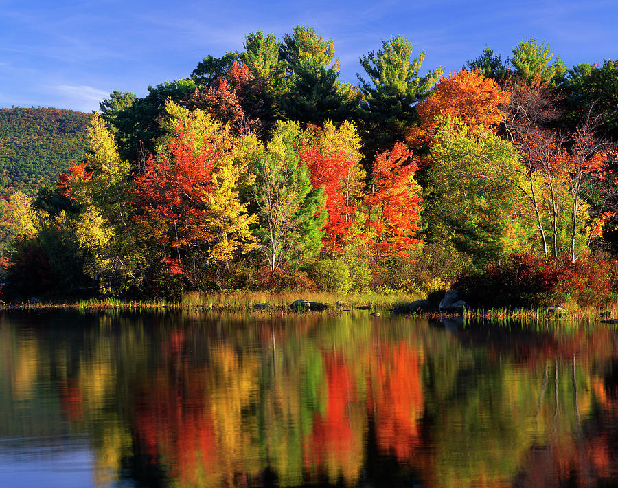 Autumn Photograph - Usa, New Hampshire, Moultonborough by Jaynes Gallery