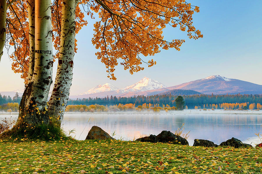 Autumn Photograph - Usa, Oregon, Bend, Fall At Black Butte by Hollice Looney