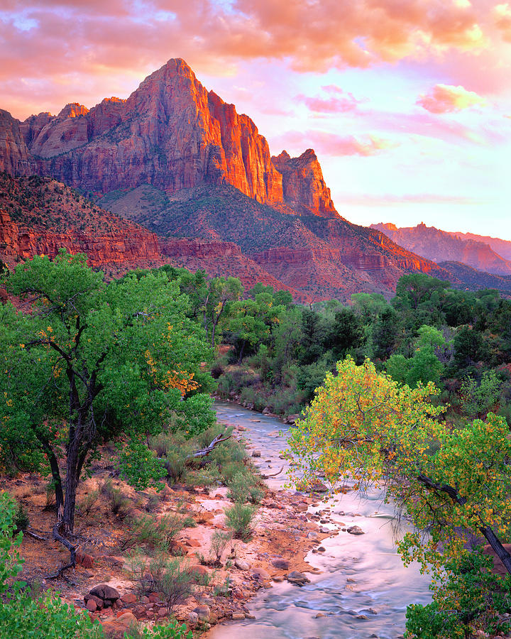 America Photograph - Usa, Utah, Zion National Park At Sunset by Jaynes Gallery