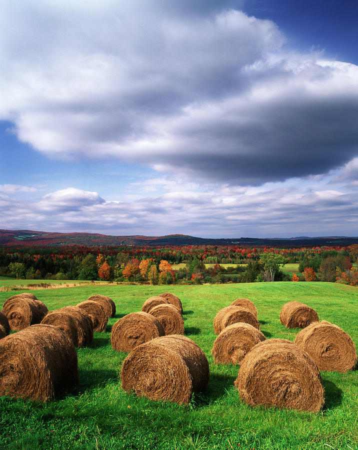 Adam Jones Photograph - Usa, Vermont, Westmore, Hay Bales by Adam Jones