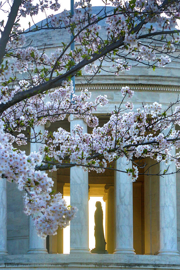 Architecture Photograph - USA, Washington Dc, Jefferson Memorial by Hollice Looney