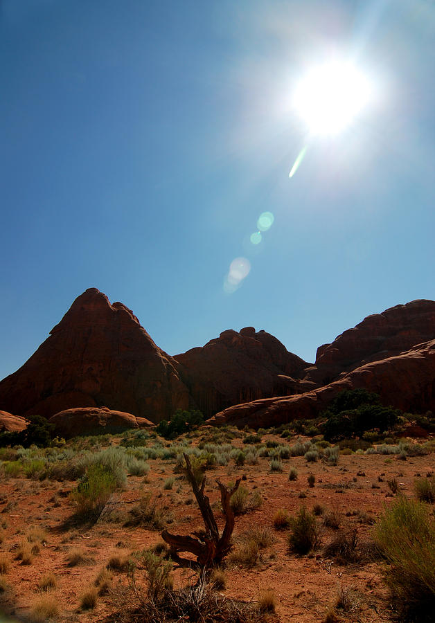 Arches National Park Photograph - Utah 1 by Tracy Winter