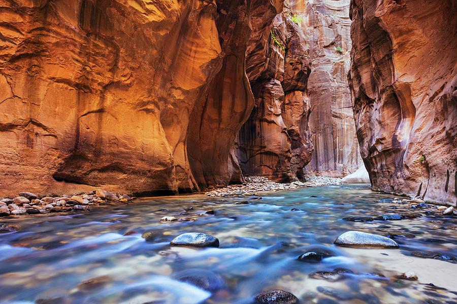 Utah, Zion National Park, Virgin River Photograph by Makena Stock Media