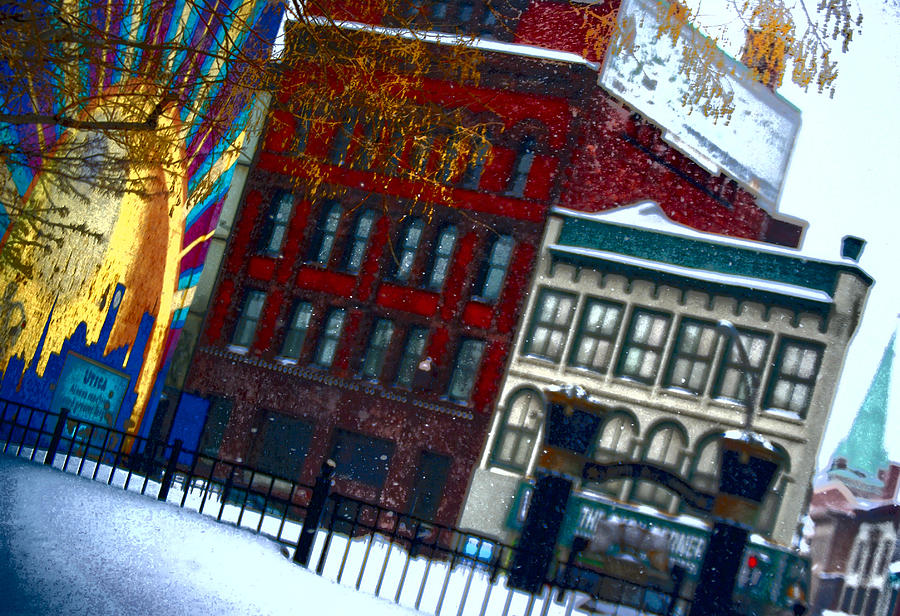 Utica Ny Photograph - Utica In The Winter by Stephanie Grooms