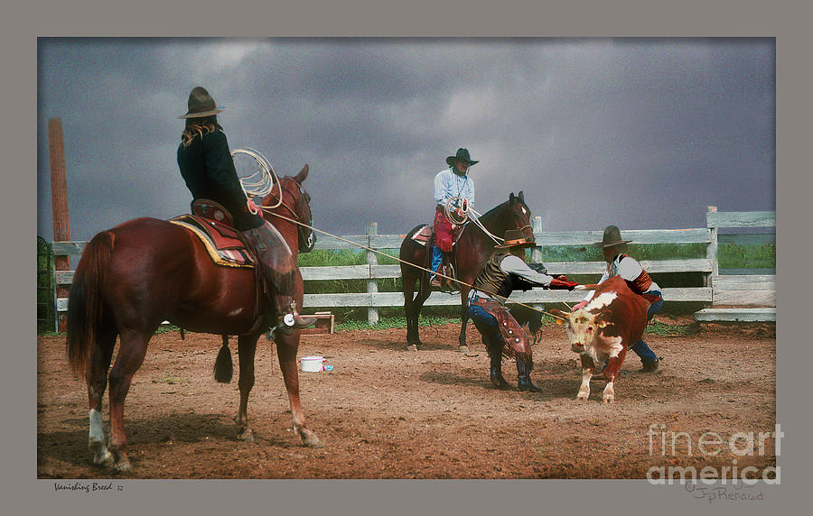 Cowboy Photograph - Vaccination Time by John Renaud
