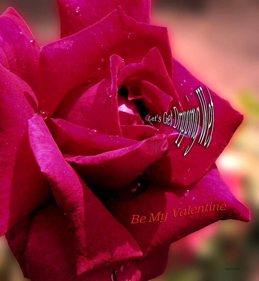 Sweetheart Photograph - Valentine Dripping Wet by Thomas Woolworth