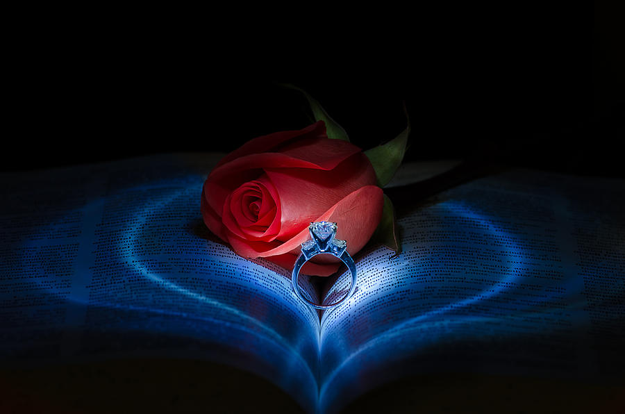 Diamond Photograph - Valentine Love by Tin Lung Chao