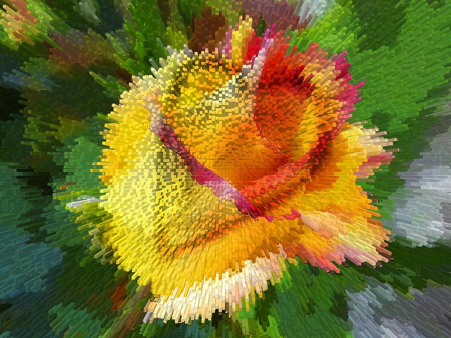 Heart Photograph - Valentine Rose by Anne Mott