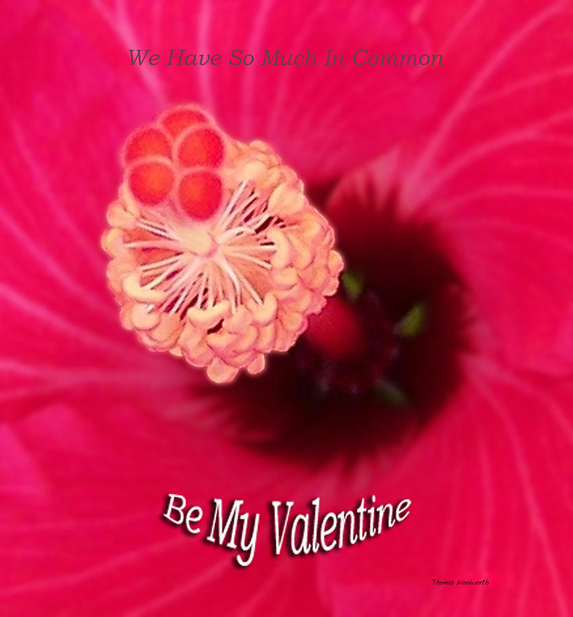 St. Valentine Photograph - Valentine We Have So Much In Common by Thomas Woolworth