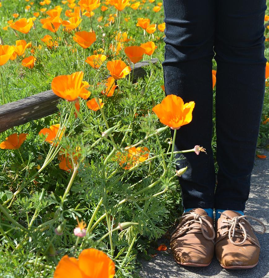 Shoes Photograph - Valerys Shoes by Lisa Lieberman
