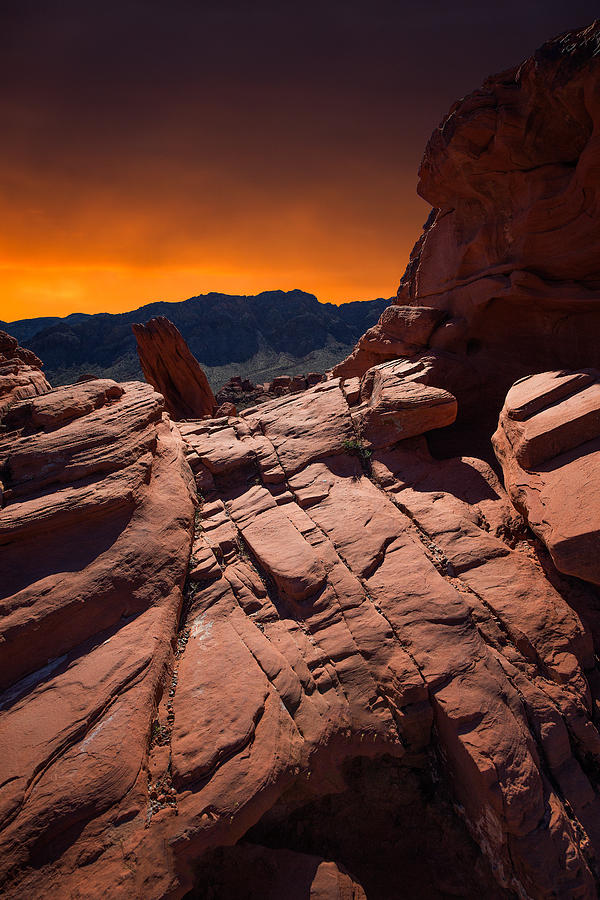 Valley Of Fire Photograph by Roland Shainidze Photogaphy