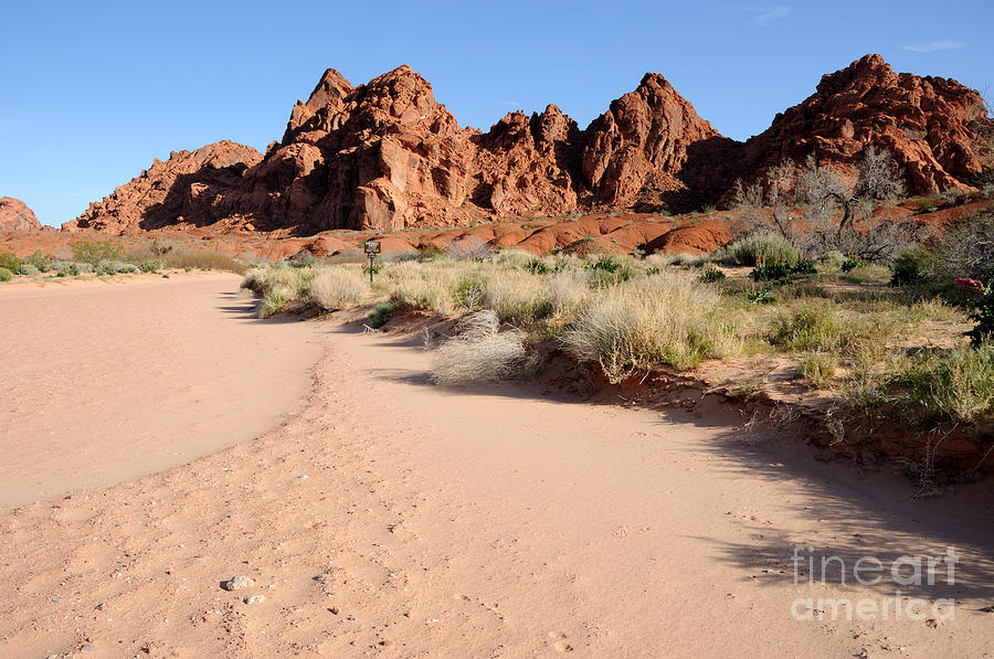 Valley Photograph - Valley Of Fire Wash by Gary Whitton