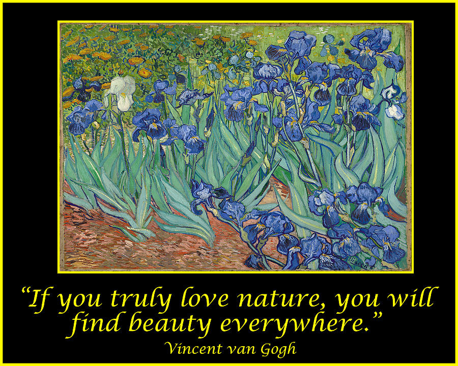 Van Gogh Motivational Quotes - Les Iris -irises Drawing by ...
