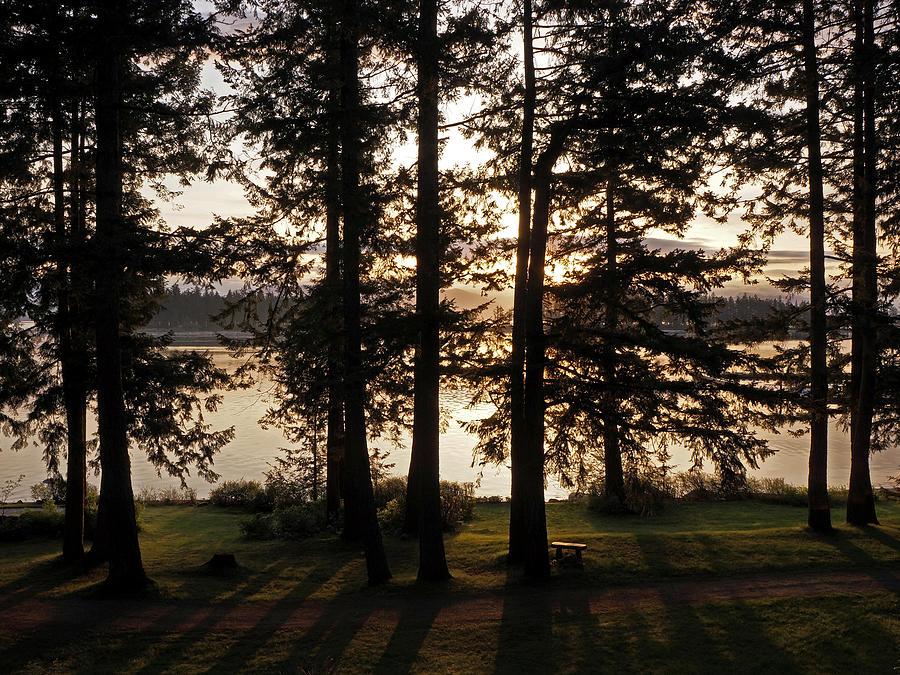 Sunrise Photograph - Vancouver Island Sunrise by Inge Riis McDonald