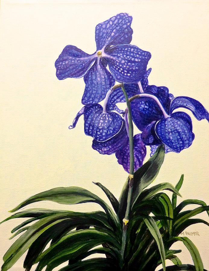 Vanda Sausai Blue Orchid by Mary Palmer