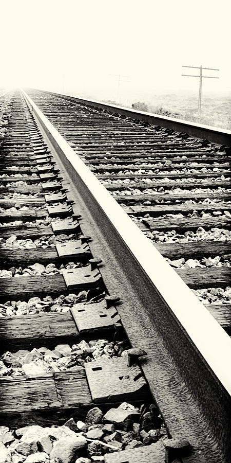 Train Tracks Photograph - Vanishing Point by Caitlyn  Grasso