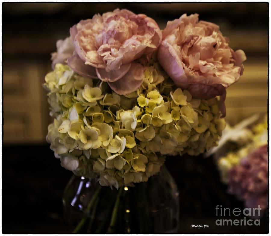 Flowers Photograph - Vase Of Flowers by Madeline Ellis