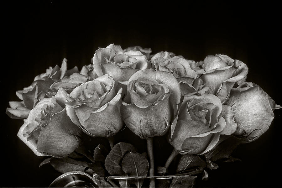 Rose Photograph - Vase Of Roses by Keith Gondron