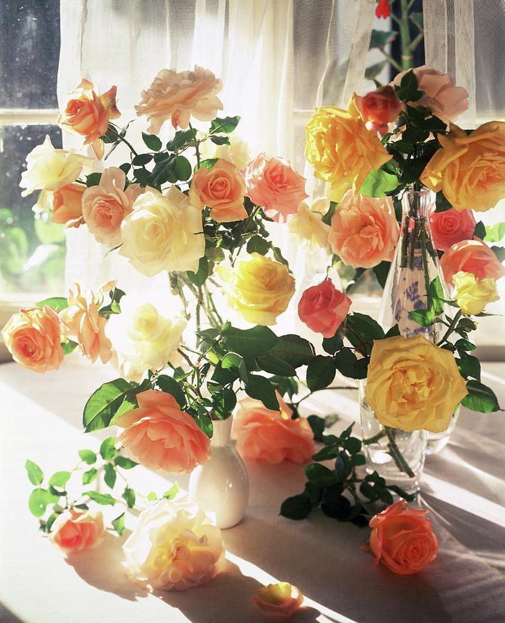 Vases Of Roses By Horst P Horst
