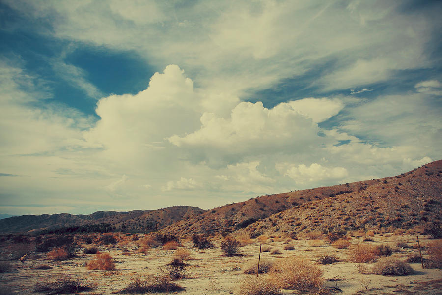 Palm Desert Photograph - Vast by Laurie Search