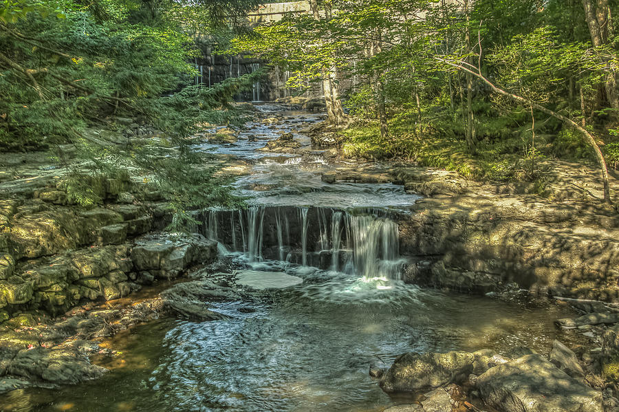 Maine Photograph - Vaughan Woods Stream by Jane Luxton