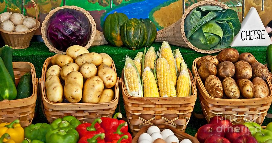 Potatoes Photograph - Vegetable Bounty by Valerie Garner