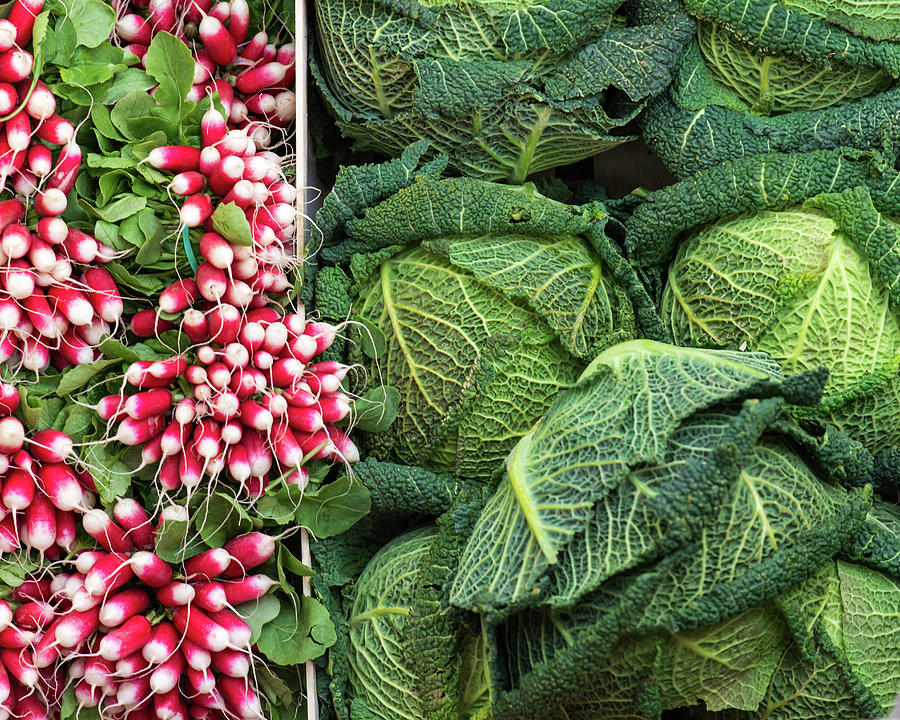 Vegetables - Cabbages And Radish Photograph by A J Withey