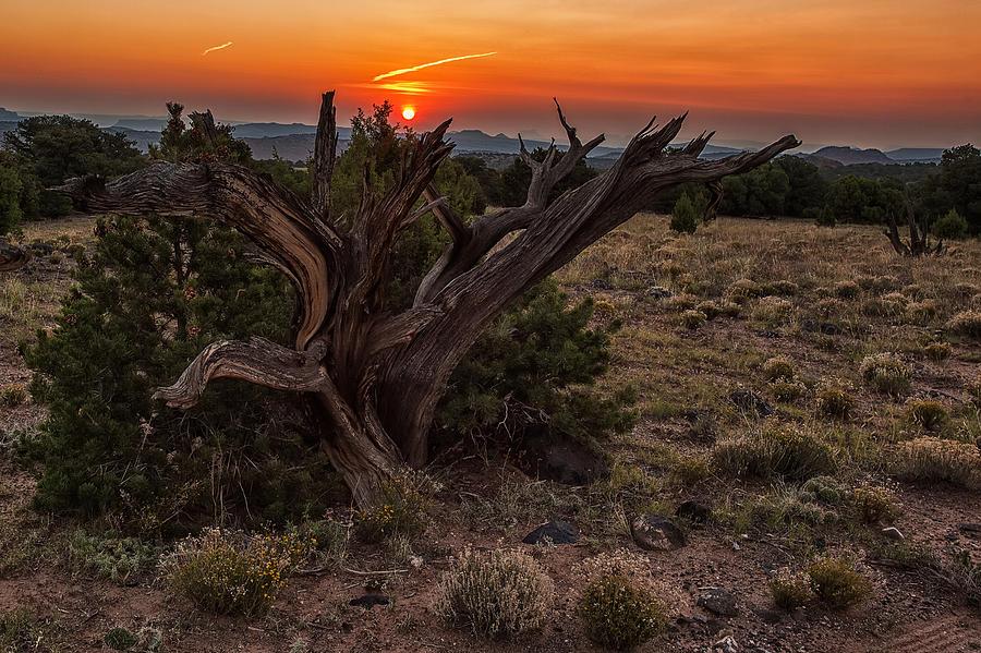 Utah Photograph - Veiled Sunrise by Jennifer Grover