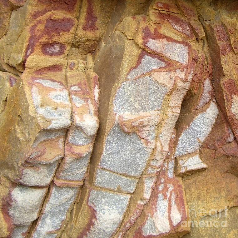 Veined Photograph - Veined Rock by Barbie Corbett-Newmin