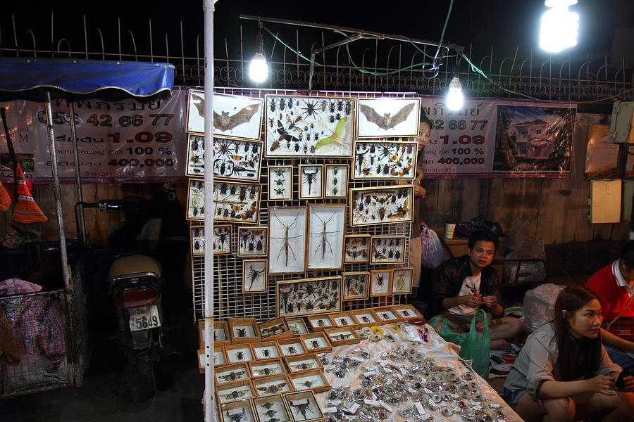Chiang Photograph - Vendors - Night Street Market - Chiang Mai Thailand - 011320 by DC Photographer