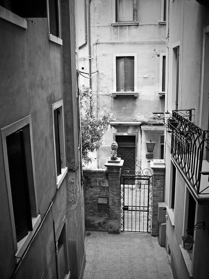 Venice Photograph - Venice Alley by Todd Hartzo