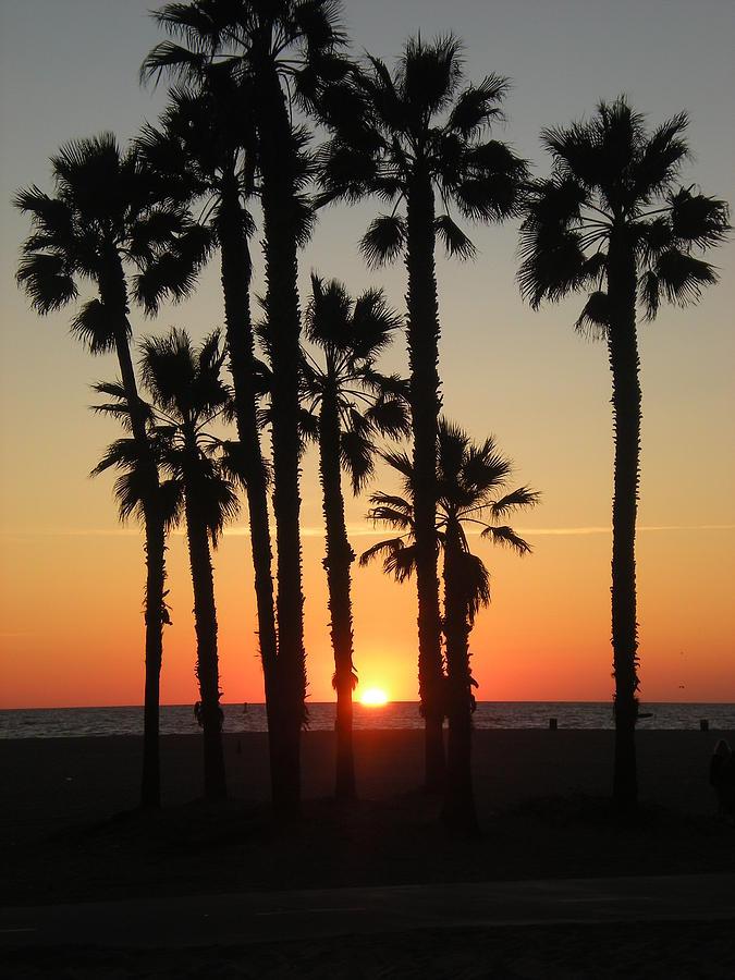 Venice Beach Sunset Photograph By Brooke's Earth Art