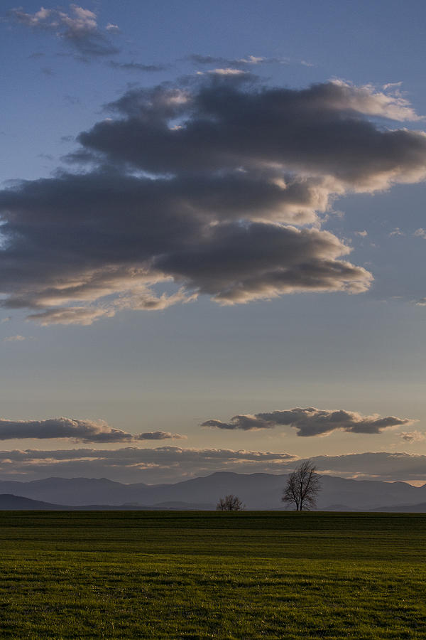 Vermont Photograph - Vermont Grass Field Trees Clouds Adirondack Mountains New York by Andy Gimino