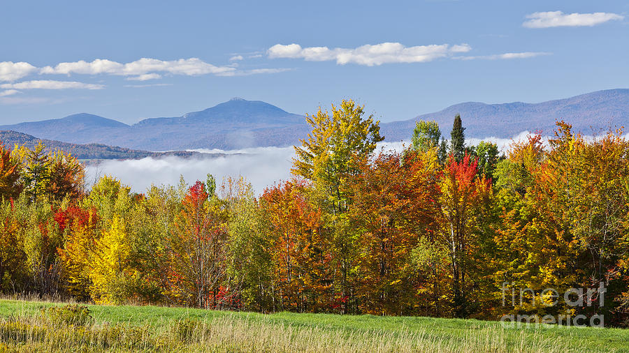 Fall Photograph - Vermont October Morning by Alan L Graham