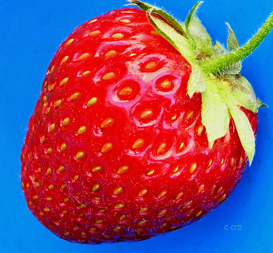 Nature Photograph - Very Strawberry  by Chris Berry