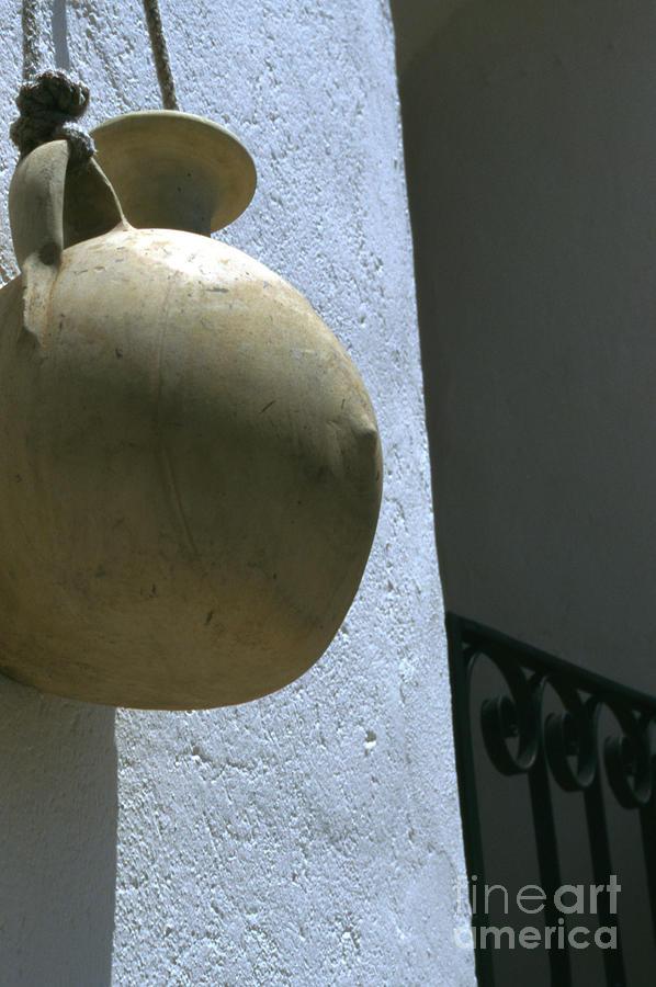 Gourd Photograph - Vesta by Carol Weitz