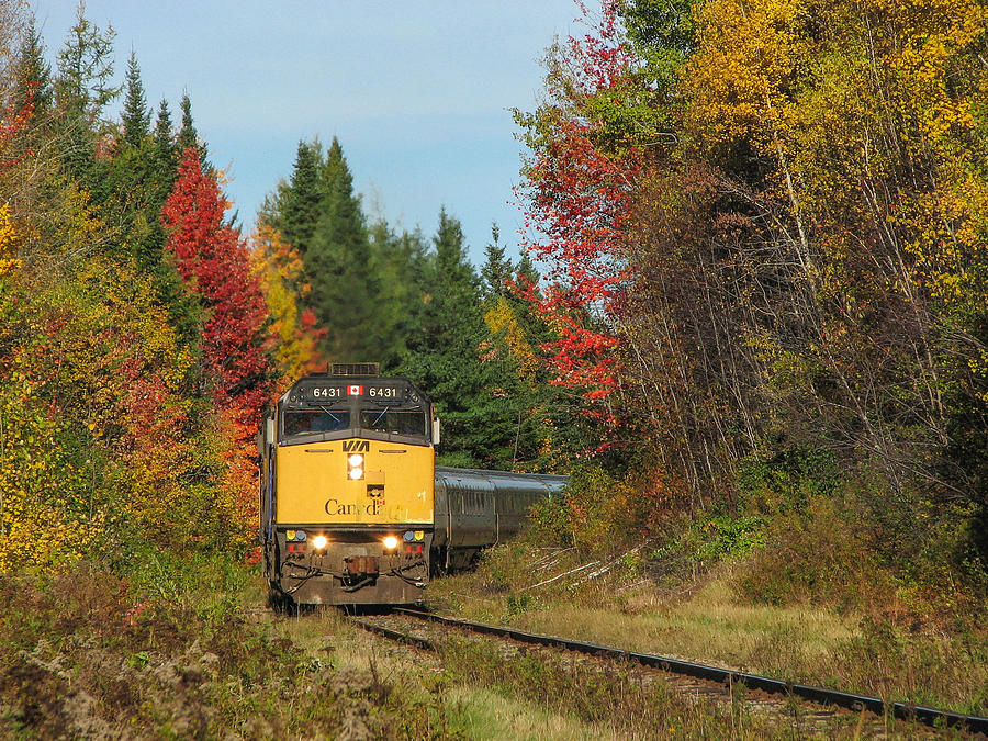 Via Photograph - Fall Colours With Train by Steve Boyko