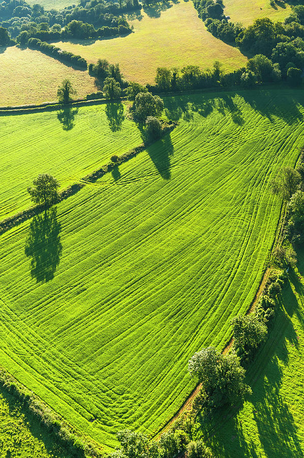 Vibrant Green Pasture Patchwork Fields Photograph by Fotovoyager