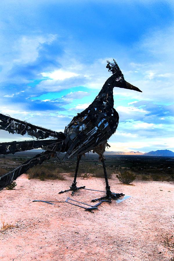 Vibrant Trash Bird Photograph