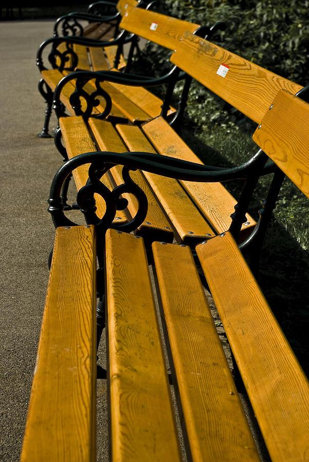 Vienna Photograph - Vienna Benches by Gabor Fichtacher