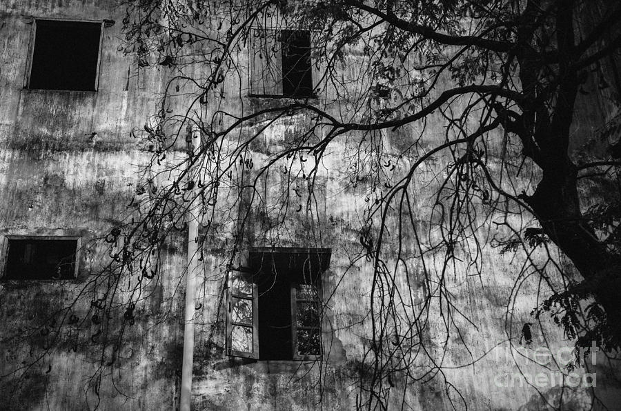 Grey Photograph - Vientiane Grey by Dean Harte