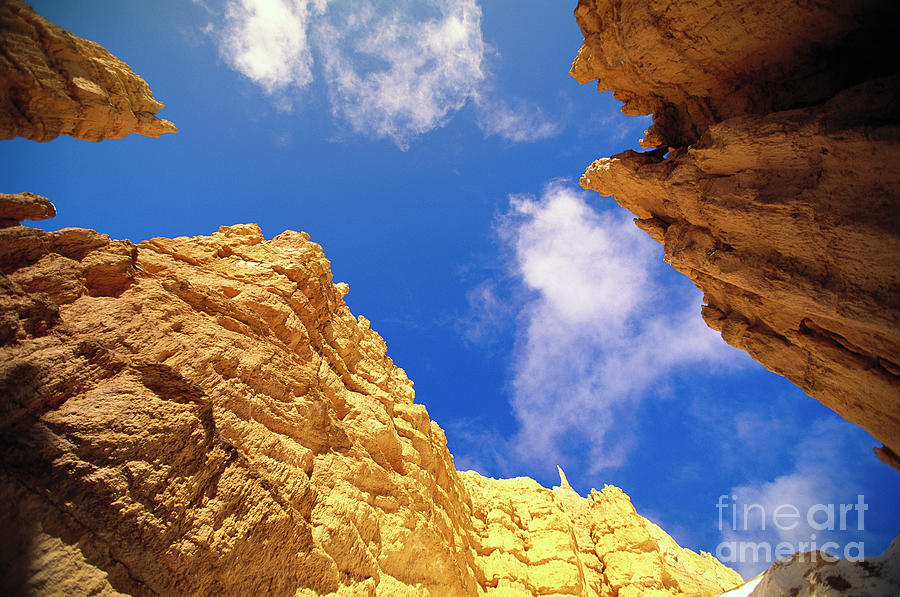 View From Floor of Bryce Canyon Photograph by Yva Momatiuk John Eastcott